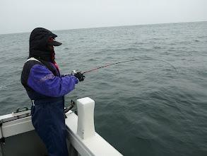 Photo: と、言う事でハタ、アラカブ釣りに変更! 戸田さん一発目から、インチクにヒット!