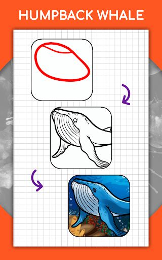 How to draw animals step by step, drawing lessons 1.3 Screenshots 21