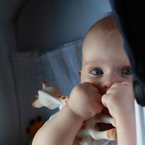 Hiden in plain sight by Simona Hatieganu - Babies & Children Babies