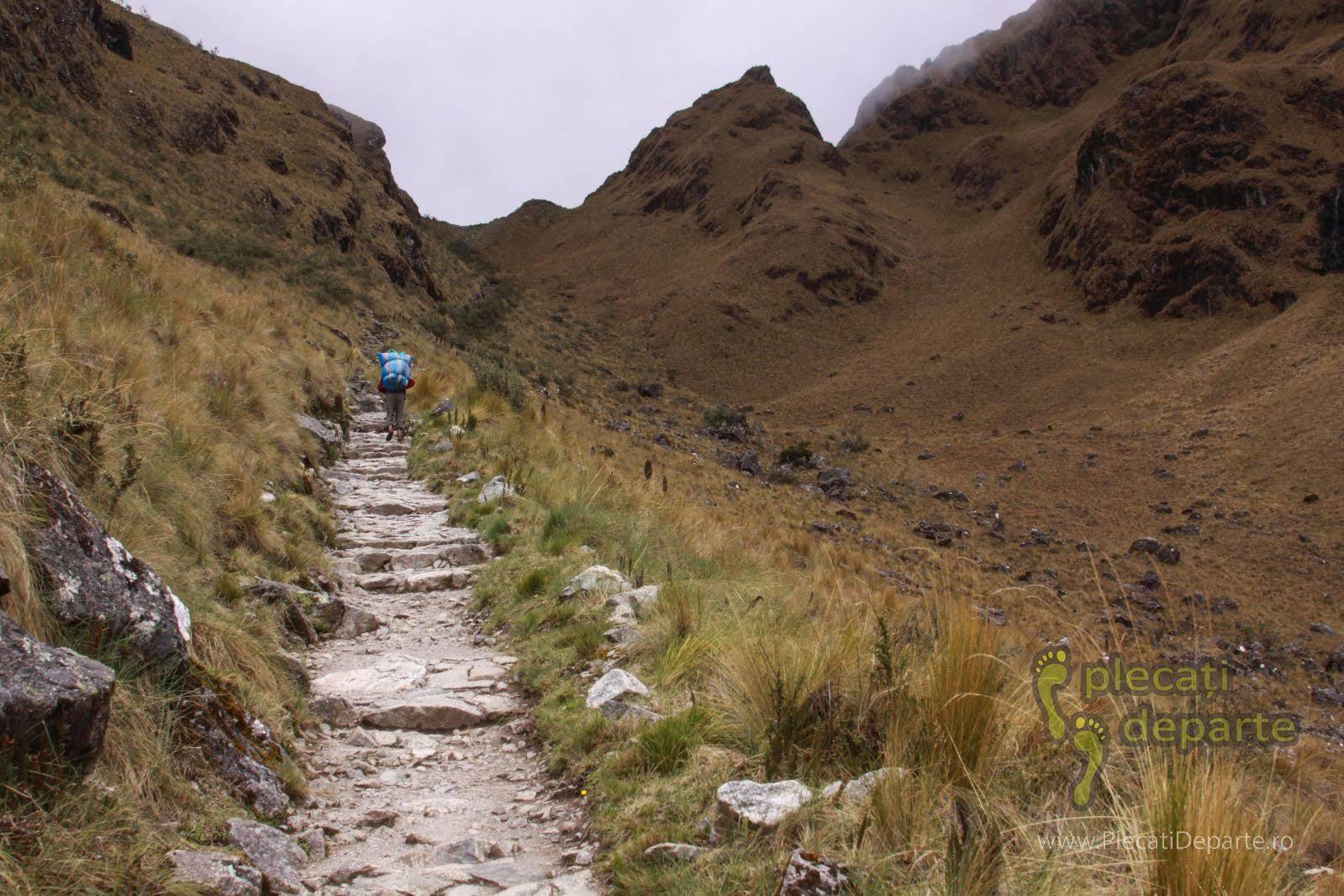 In spatele unui porter, urcand pe Inca Trail spre Dead Woman's Pass 4215m