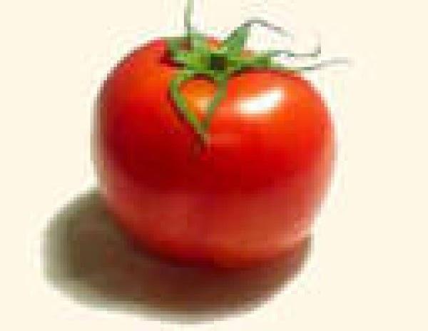How To Prolong The Shelf Life Of A Tomato? Recipe