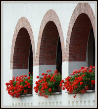 Photo: Windows in Offensen