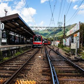 Hakone Train by Maya Bar - Transportation Railway Tracks ( japan, train station, railway, train )