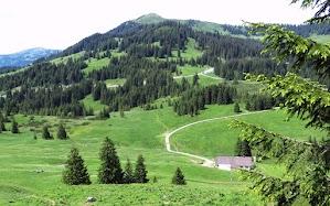 Blick über Schönbergalpe zum Riedberger Horn Obermaiselstein Besler Allgäu