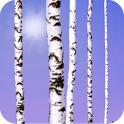 Birch Wood Live Wallpaper icon