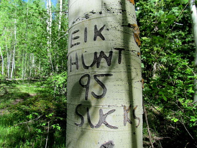 Just in case you were wondering how the 1995 elk hunt went
