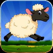 Lucky the sheep - Farm run