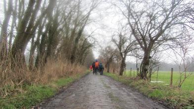 Photo: Kerselarendreef bij Neerijse in de regen
