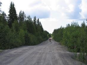 Photo: Карельские дороги