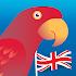 Speak English! (free)