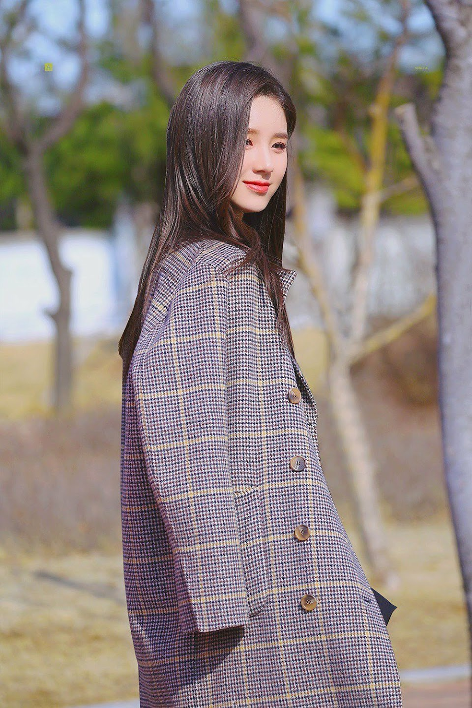 heejin plaid 31