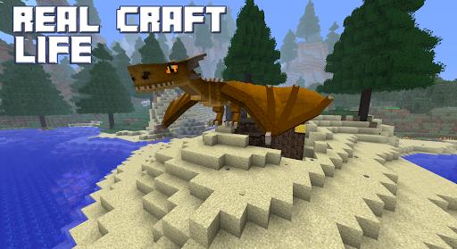 Real Life Craft Mod screenshot 3