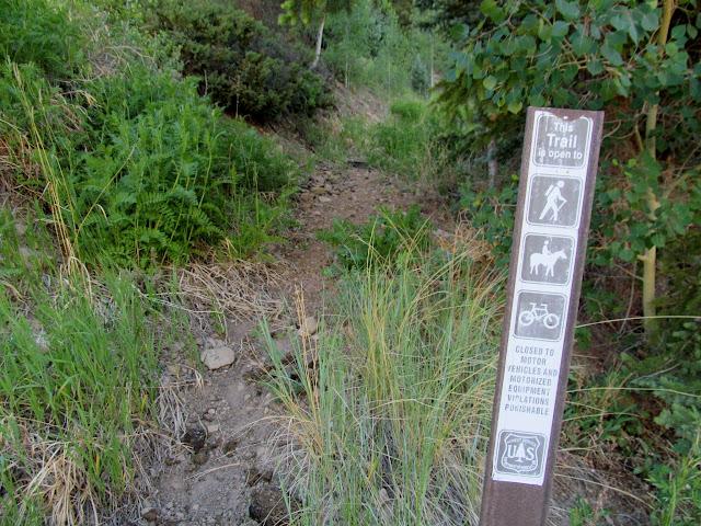 Pipeline Trail
