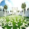 Wedding Decoration Ideas icon