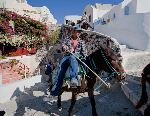 Santorini-donkey-2.jpg - Donkeys making their way up the steps of Oia, Santorini.
