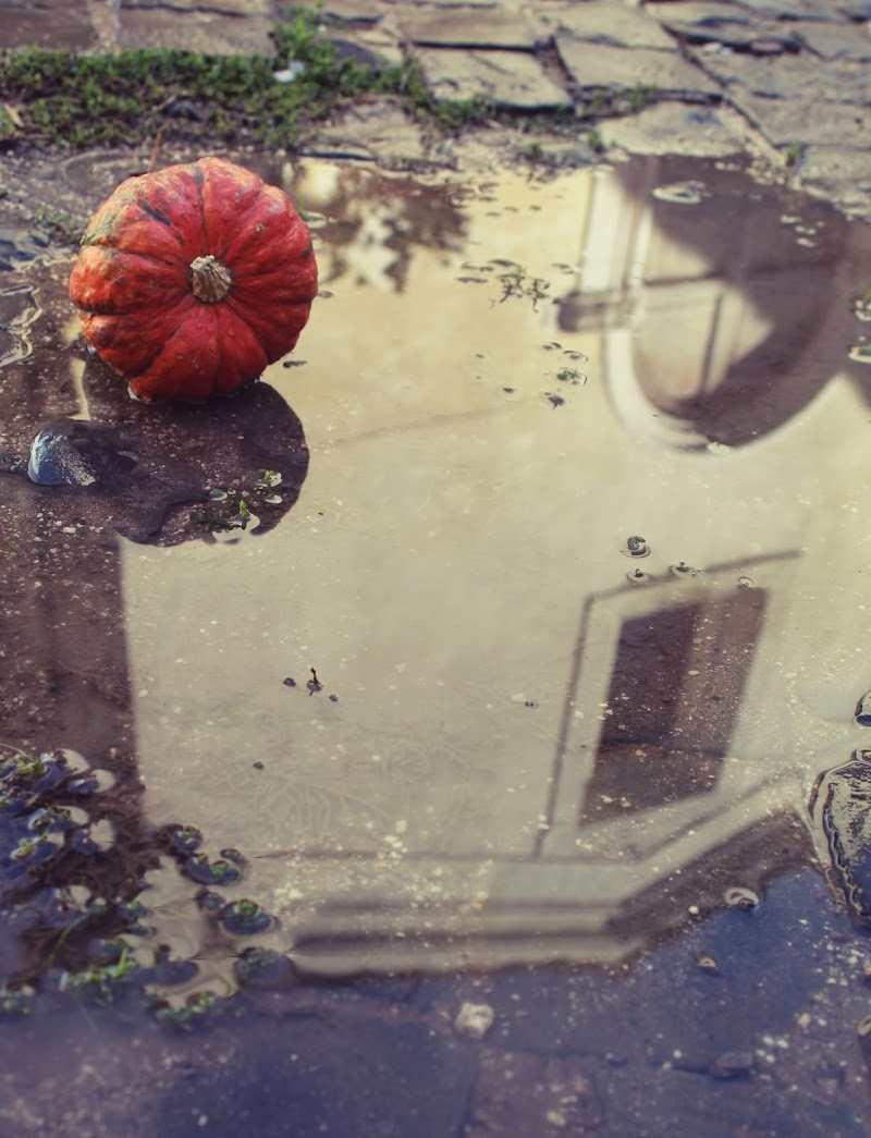 Pioggia d'autunno di Rita84