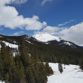 Snowy Mountains by Riddhima Chandra - Landscapes Mountains & Hills ( canada, snow, travel, trees, summer in canada )