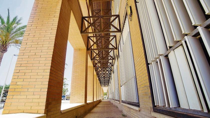 Los antecedentes históricos de la Universidad de Almería