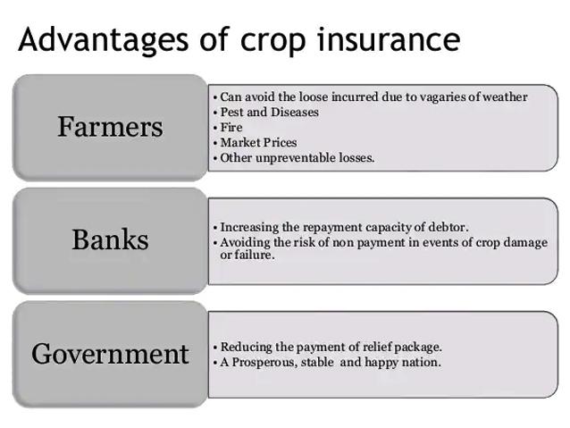 Advantages of Crop Insurance