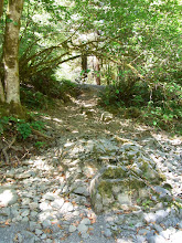 Photo: The steep, rocky path back up to my camp