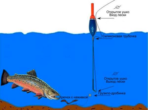 Особенности ловли форели в разное время года ― Рыболовные снасти ...