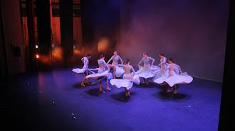 Imagen de archivo de una actuación flamenca organizada por el Conservatorio Profesional de Danza Kina Jiménez de Almería en el Maestro Padilla.