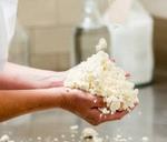 Cheesemaking Workshop : Babylonstoren