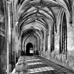 Cambridge Shadows by Terry Scussel - Buildings & Architecture Other Interior ( pwc74: black & white interiors, black and white, interior, building, monotone )