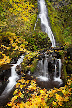 Photo: Just got back to Portland from my work travel and my new monitor was waiting on me. So now it is time to start cranking through the backlog of pictures. Here is one for #FallFriday / #FourSeasonsFriday curated by +Stephonie Ogden and +Karin Nelson taken a few weeks ago at Starvation Creek.