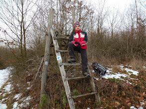 Photo: A Nyulak mióta másznak kerítésre?