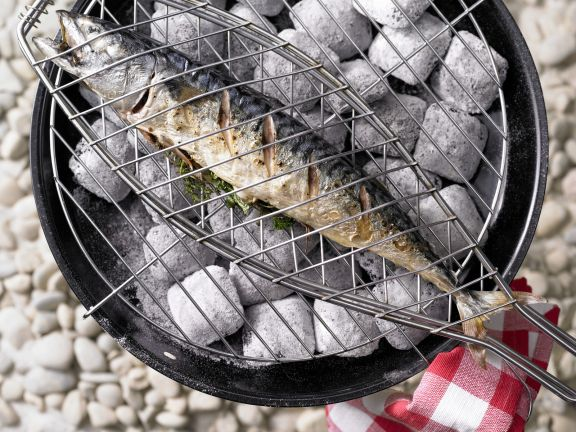 Grilled Mackerel with Herbs