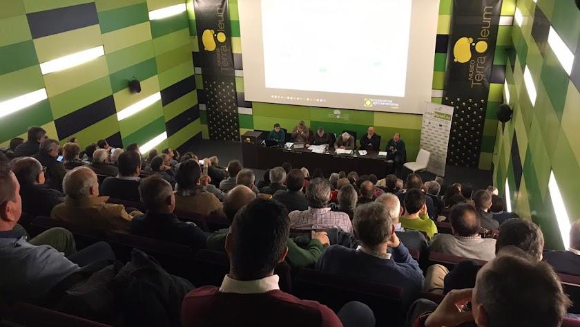 Almazaras de toda Andalucía se reunieron ayer en Mengíbar (Jaén) en un nuevo Consejo Sectorial de Aceite de Oliva.