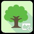 ASUS DayScene - Live wallpaper icon