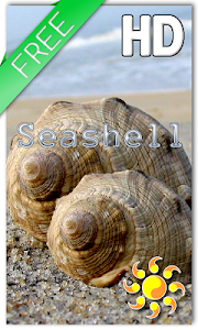Sea shell Live Wallpaper v1.1