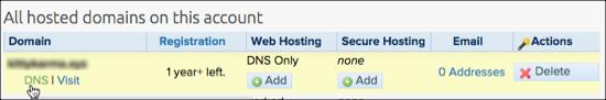 Domain DNS option