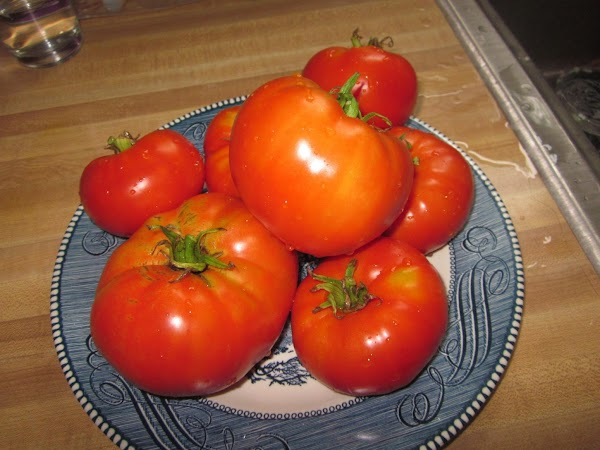 Start with 6 nice ripe red tomatoes.