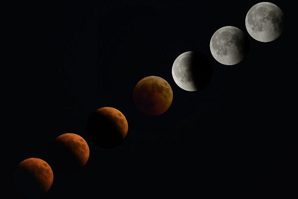Eclissi di Domenico Cippitelli