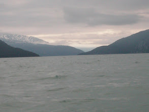 Photo: Looking north up Taku Inlet.
