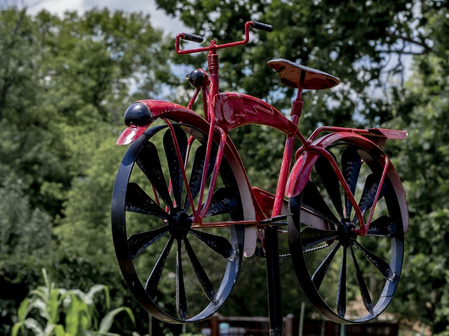 Red Bike Garden Ornament by Greg Bennett - Artistic Objects Other Objects ( red, artistic objects, ornament, green, il, o'fallon garden club, flower garden, bike, o'fallon )