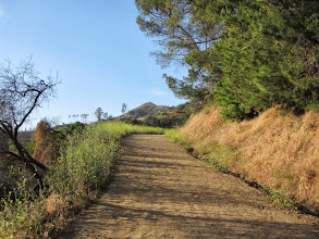 Photo: On the segment of trail above Mt. Hollywood Drive. Mt. Hollywood looms above.