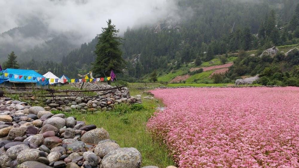 top-monsoon-getaways-Peora_Uttarakhand