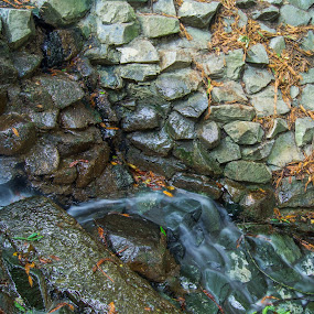 Water flows.  by Mehdi Laraqui - Nature Up Close Water ( water, nature, flow., autumn, waterfall, nature up close, forest, leaves, motion, rocks )