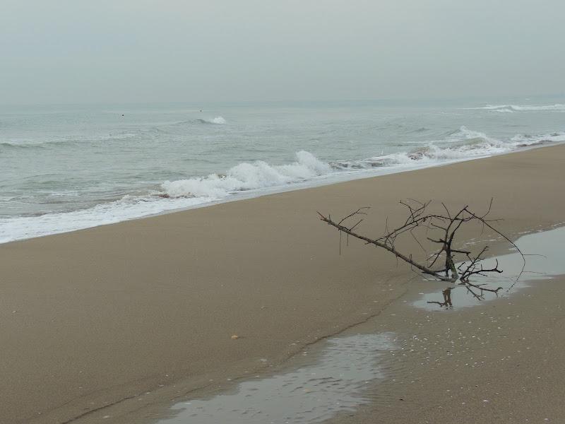 la plage di FrancescoLeoni