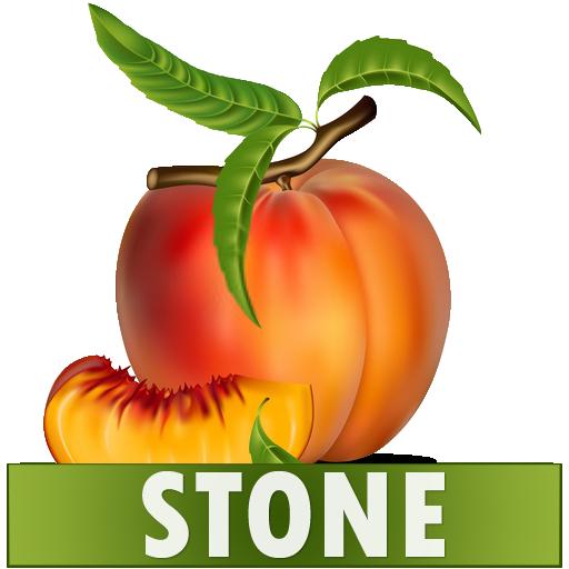 Stone Diet Renal Gall Bladder Kidney Gallbladder - Apps on