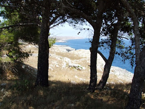 Photo: Daher machen wir uns am Nachmittag auf den Weg, entlang der wild-schönen Küste, ...