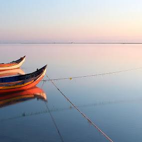 by Paulo Faria - Transportation Boats