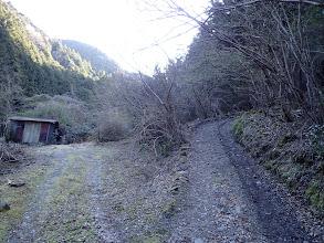 右の林道へ