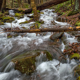 Flowing water by Dave Bradley - Nature Up Close Water ( water, nature, outdoor, nature up close, scenic )
