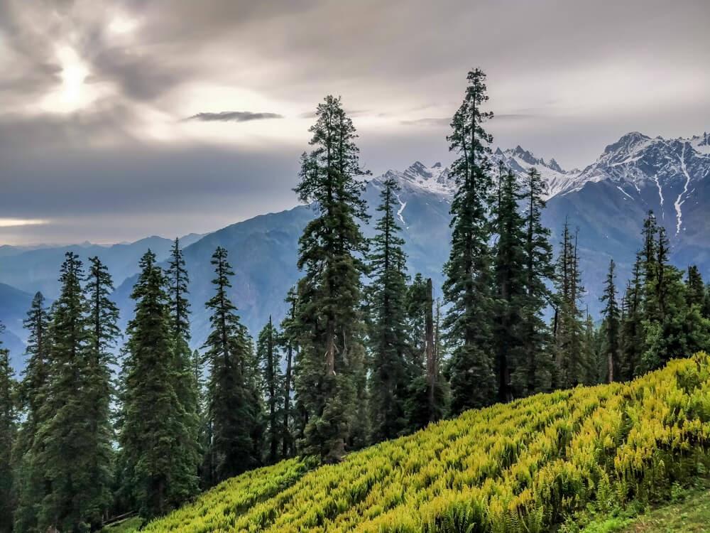 bunbuni+kheerganga+trek+kalga++parvati+valley+himachal+pradesh+india