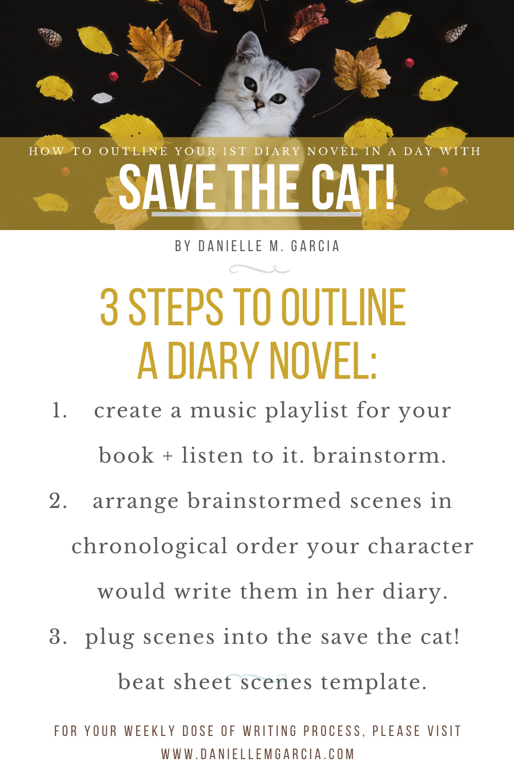 3 steps to outline a diary novel with save the cat!